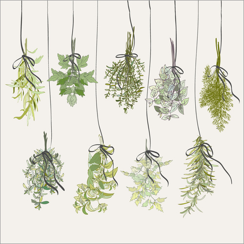 Wall sticker Herb bouquets