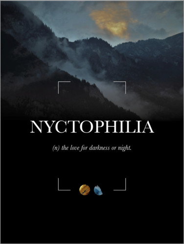 Nyctophilia Definition Posters And Prints Posterlounge Com