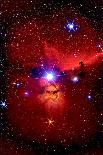 Premium poster Horsehead Nebula in the constellation Orion