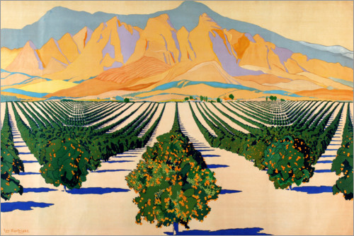 Premium poster South African Orange Orchards