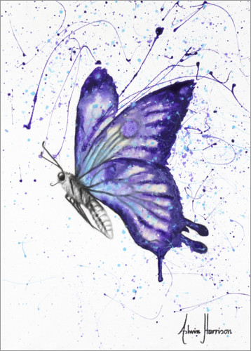 Premium poster Lavender Butterfly