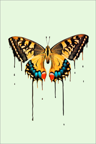 Premium poster Melting butterfly