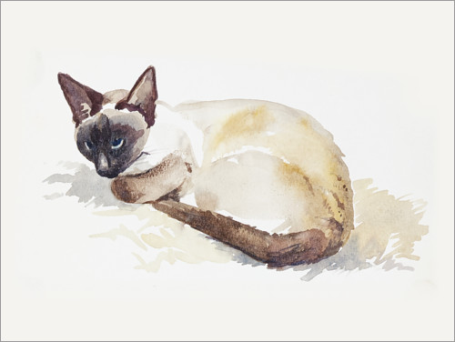 Premium poster Portrait of my cat, watercolor
