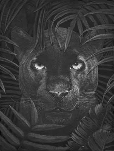 Premium poster Panther in the jungle