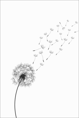 Premium poster Flight of the Dandelion