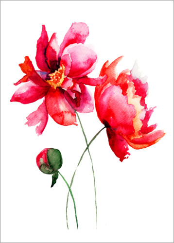 Premium poster Red flowers