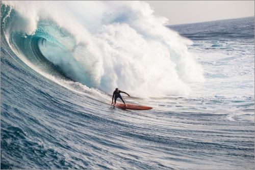 Premium poster The perfect wave in Hawaii, USA