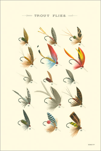 Premium poster Trout Flies I