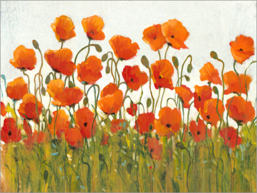 Premium poster Rows of Poppies I