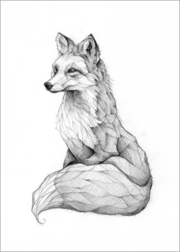 Premium poster Vulpes vulpes, black and white