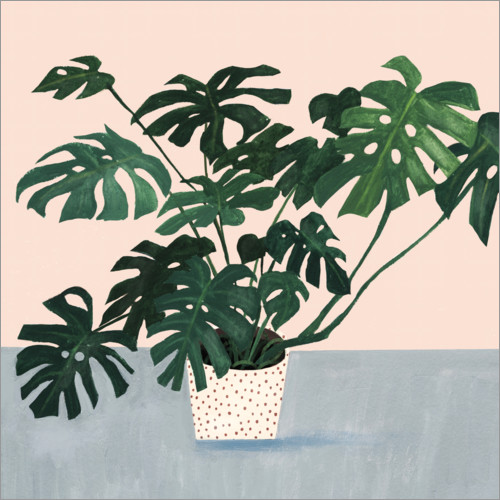 Premium poster Monstera in spotted pot