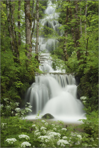 Premium poster Waterfall in the forest, France