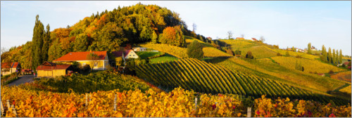 Premium poster South Styrian Wine Route in autumn