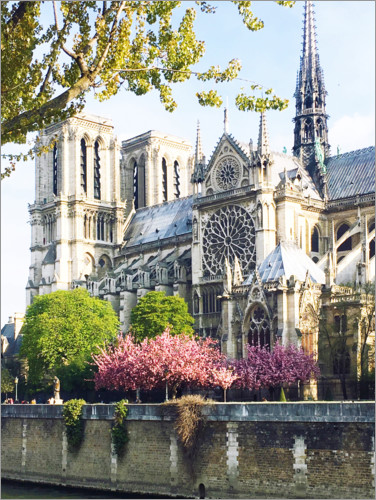 Premium poster Notre Dame in spring