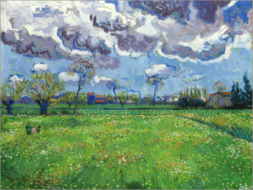 Premium poster Meadow with flowers and leaden sky