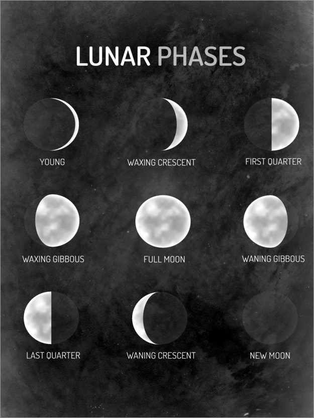 Premium poster Moon phases - English