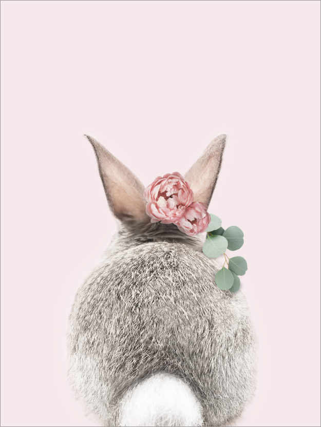 Premium poster Flower Bunny Tail
