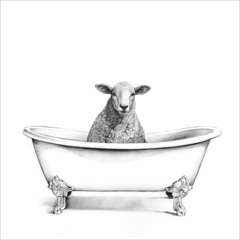 Premium poster Sheep in the Tub