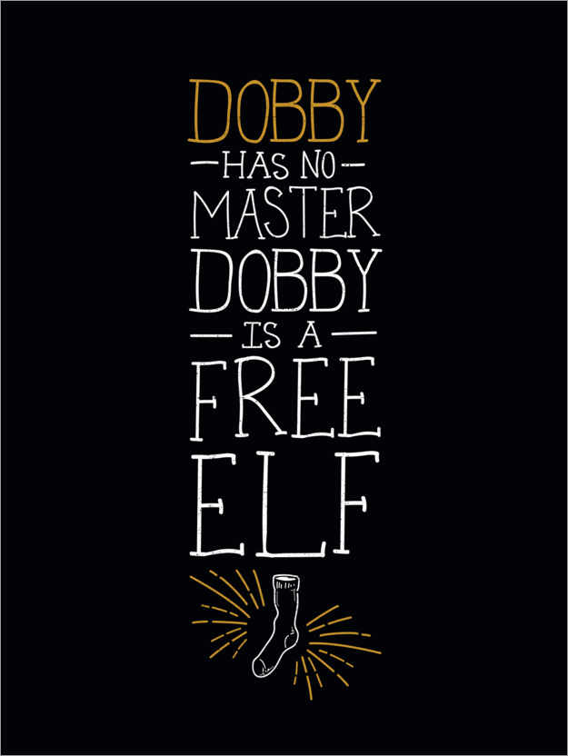 Premium poster Dobby has no master - Quote