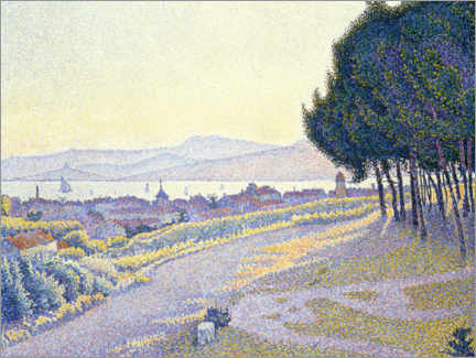 Wall sticker  Pine grove above Saint-Tropez - Paul Signac