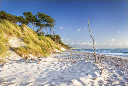 Canvas print  Beach at the Baltic Sea - Sascha Kilmer