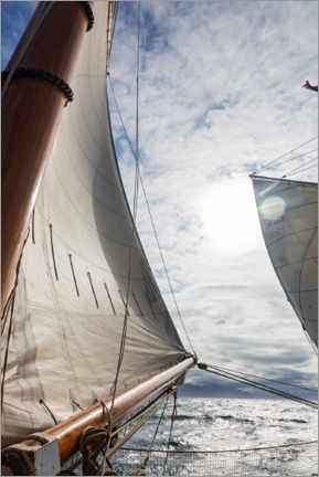 Premium poster  Wind in the sails - Caia Image