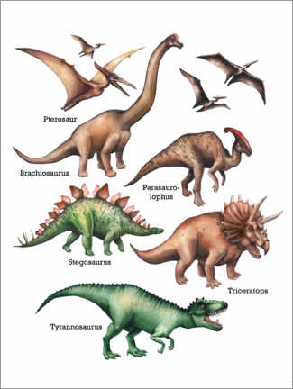 Aluminium print  The names of the dinosaurs