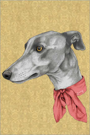 Canvas print  Greyhound - Barruf