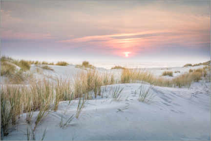 Premium poster  Sunrise in the dunes on Sylt - Christian Müringer