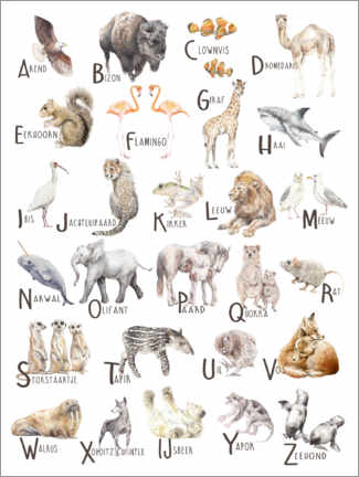 Aluminium print  Animals A to Z Alphabet (Dutch) - Wandering Laur