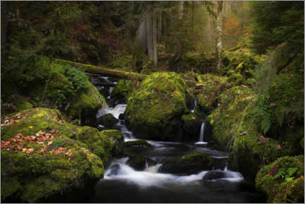 Premium poster  Small waterfall in the Black Forest in Germany - Jos Pannekoek