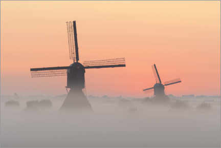 Premium poster Windmills on a misty morning