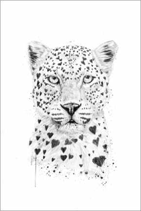 Wall sticker  Lovely leopard - Balazs Solti