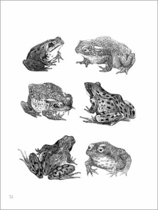 Foam board print  Frogs and Toads - Theo van Hoytema