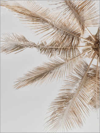 Wood print  Golden palm VII - Magda Izzard
