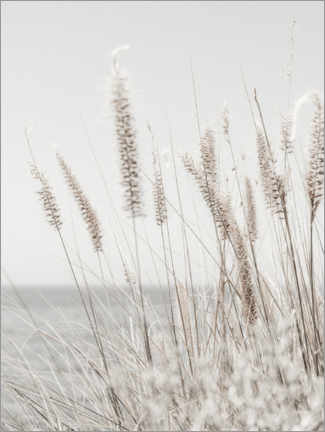 Wood print  Grasses - Magda Izzard