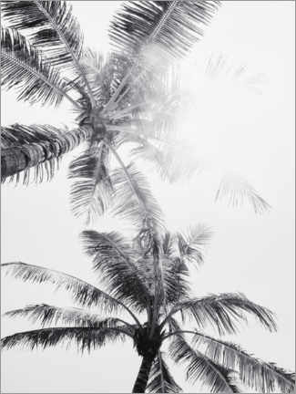 Premium poster  Palm trees of Bali I. - Magda Izzard