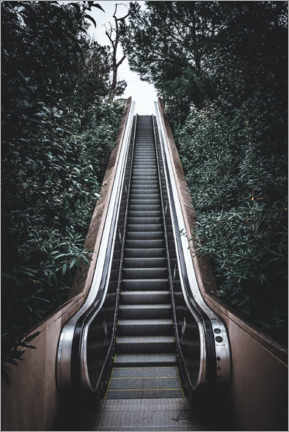 Premium poster Escalator in the jungle