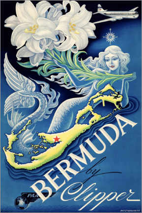 Premium poster  Bermuda - Travel Collection