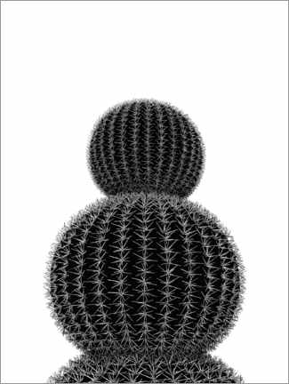 Acrylic print  Black cactus - Finlay and Noa