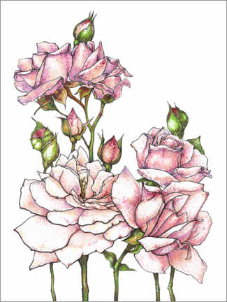 Premium poster Bouquet of pink roses