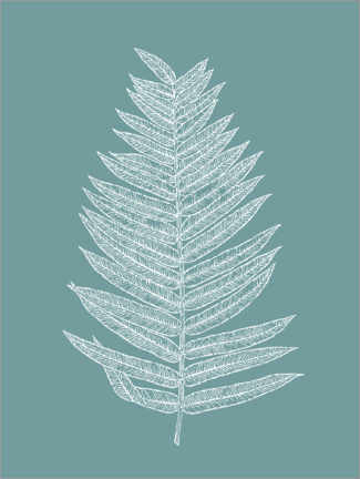 Premium poster  Palm leaf botany - apricot and birch