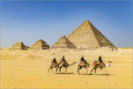 Aluminium print  Camel riders in front of the pyramids of Giza - HADYPHOTO