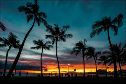 Premium poster  Palm trees in the sunset, Hawaii - Road To Aloha