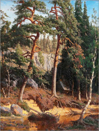 Premium poster  In the forest - Fanny Churberg