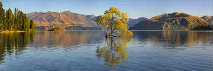 Canvas print  Lake Wanaka at sunrise - Markus Lange