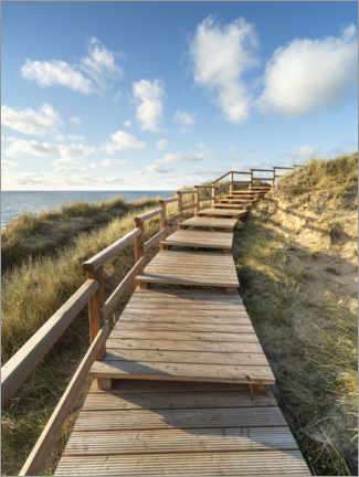 Premium poster  Wooden walkway on Sylt near Kampen - Jan Christopher Becke