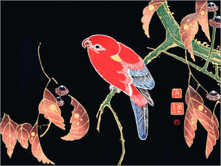 Premium poster Red parrot on the branch of a tree
