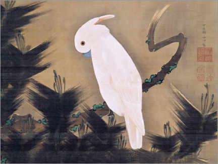 Canvas print  White cockatoo on a pine branch - Itô Jakuchu