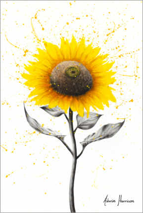 Acrylic print  Sunflower Celebration - Ashvin Harrison